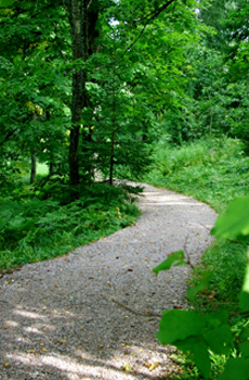 Hvittorpin puistossa mieli rauhoittuu luonnon keskellä.